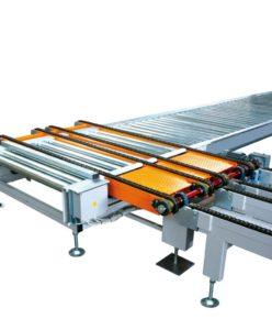 Roller Chain Conveyor1